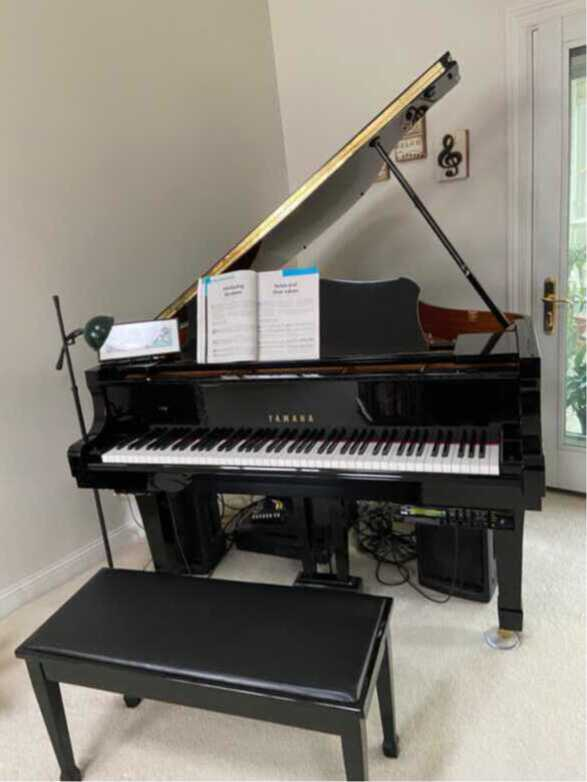Disklavier with Hours of Player Disks