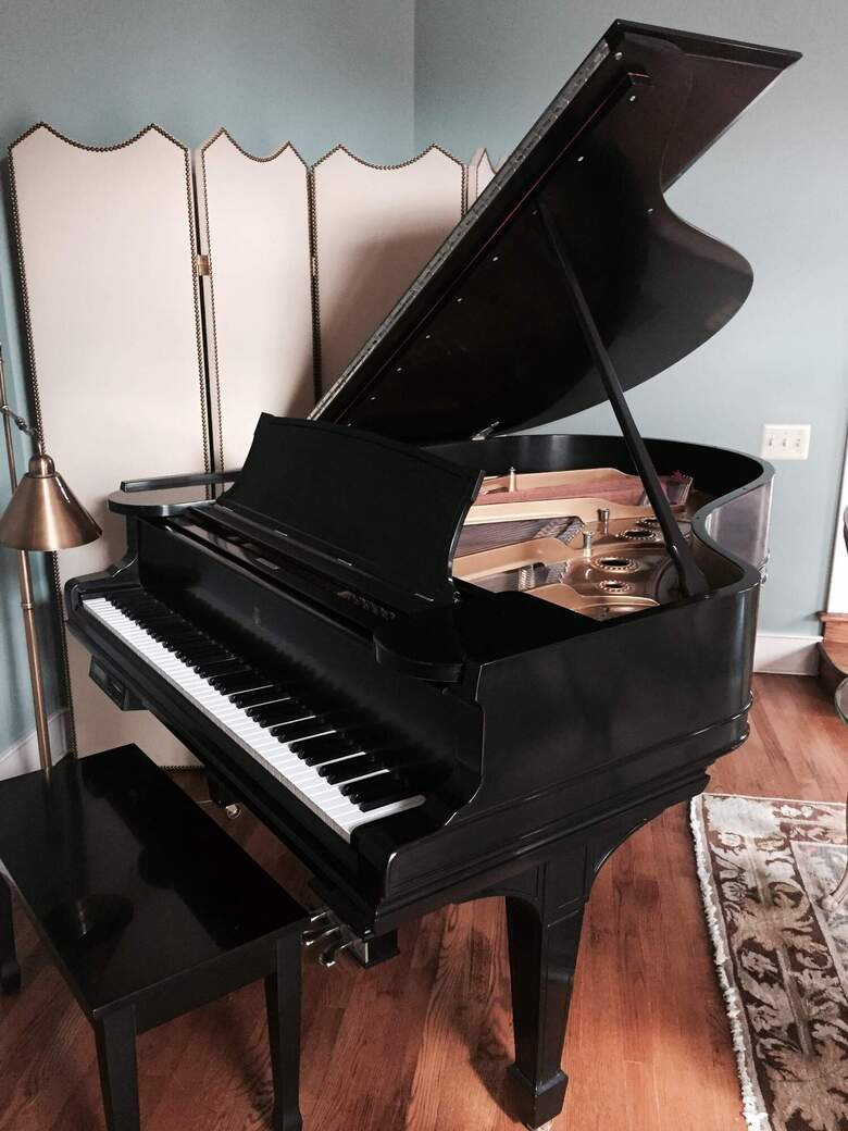 Beautiful piano with disc player