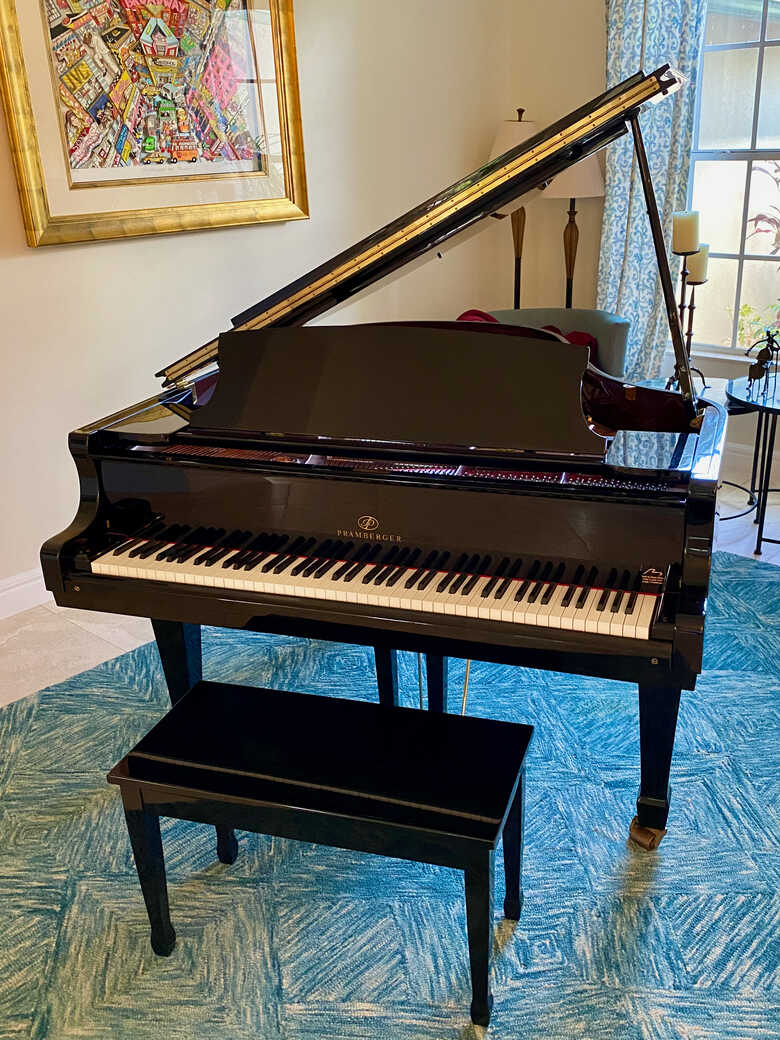 NEW PRICE - Young Chang Pramberger Regal Professional Grand