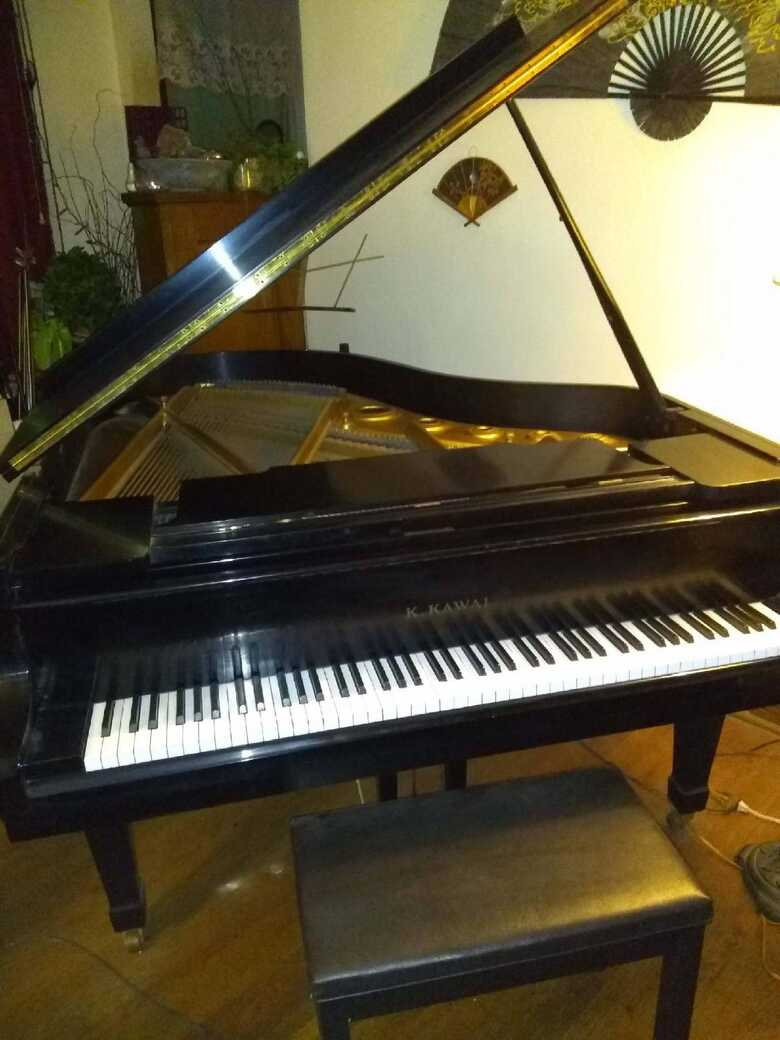 Beloved Piano For Sale