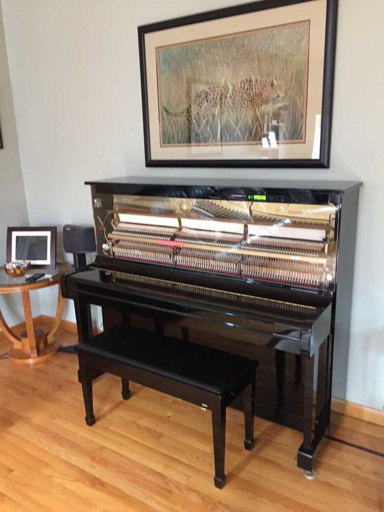 Yamaha Disklavier Upright Clear Front