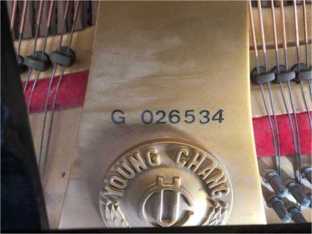 """Young Chang 5'6"""" Baby Grand G 026534"""