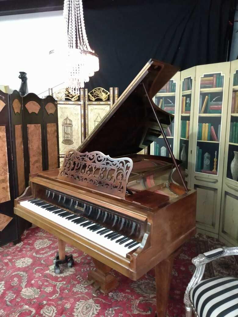 Rare and beautiful Pleyel grand piano ( free Yamaha key felt